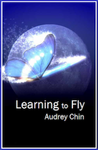Learning-to-Fly-Cover-2