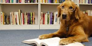 thdog reading